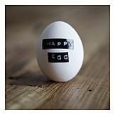 Bio, Free range, Happy egg, Happy chickens