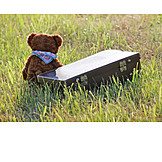 Solitude & Loneliness, Holiday & Travel, Teddy, Suitcase, Runaway