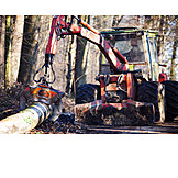 Forestry, Forest work