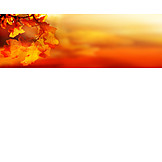 Backgrounds, Autumn, Autumn
