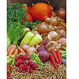 Vegetable, Thanksgiving