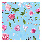 Backgrounds, Flowers, Flowers