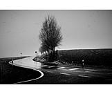 Weather, Street, Road, Snowing