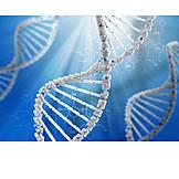 Forschung, Genetik, Dna