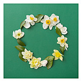 Petals, Flower wreath