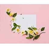 Valentine, Flower Pattern, Love Letter, Floristry, Flower Arrangements