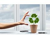 Zuhause, Recycling, Mülltrennung