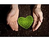 Nature, Environment, Heart, Ecology