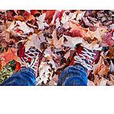 Leaves, Feet, Walk