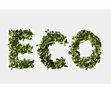 Ecologically, Ecology, Eco