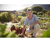 Gardening, Harvesting, Garden center, Gardener
