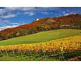 Thuringia, Wine, Growing region