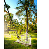 Relaxation & Recreation, Relaxing, Vacation, Palm, Hammock