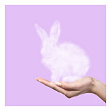 Easter bunny, Rabbit, Illusion
