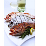 Perch, Fish Dish, Orange Roughy, Coral Hind
