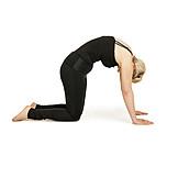 Yoga, Dehnung, Rückengymnastik