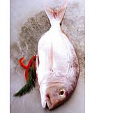 Prepared Fish, Gilt Head Bream