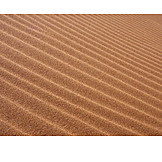 Desert, Rippled