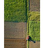 Field, Arable, Tractor