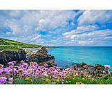 Cornwall, Coastline