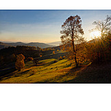 Landschaft, Herbst