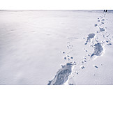 Snow, Footsteps