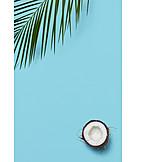 Coconut mark