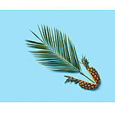 Tropical, Palm leaf, Pineapple