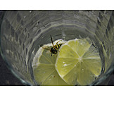 Bee, Beverage