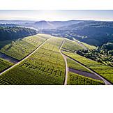 Vineyards, Rems, Murr, Kreis