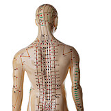 Acupuncture, Meridian