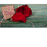 Valentine, Red Rose