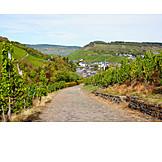Wine, Traben-trarbach