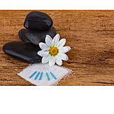 Alternative Medicine, Acupuncture, Chinese Medicine
