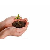 Wachstum, Umwelt, Umweltbewusstsein