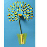 Petals, Chrysanthemum