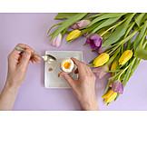 Eating, Boiled Egg