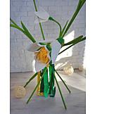 Flower, Craft, Crepe Paper