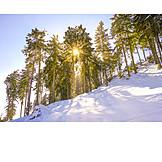 Winter Landscape, Resin, Wurmberg