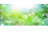 Sunlight, Spring, Light Green
