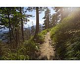 Trail, Herzogstand