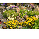 Garden, Rock Garden, Flower Bed