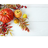 Fruits, Leaves, Autumn