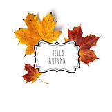 Herbst, Herbstgrüße, Hello Autumn
