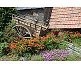 Garten, Holzkarren