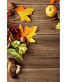 Herbst, Laub, Frucht