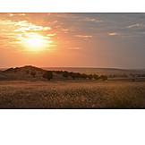 Nature, Sunset
