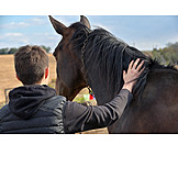 Boy, Horse, Stroking