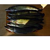 Prepared Fish, Pike