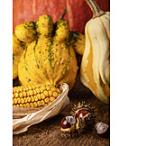 Still Life, Thanksgiving, Autumn Decoration